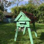 ruche-horizontale-en-palette-installée-dans-le-jardin